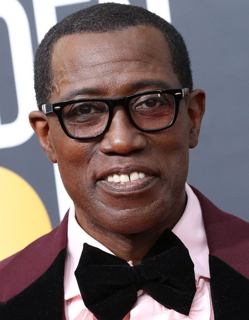 What Is Wesley Snipes Net Worth